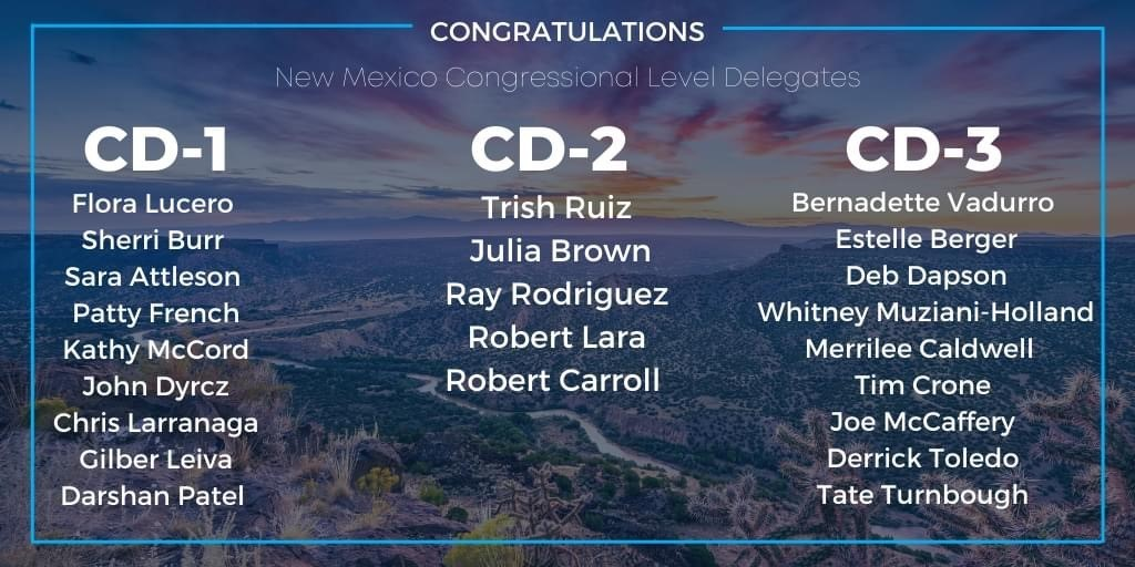 Democratic Party Delegate Elections Results for June 13, 2020